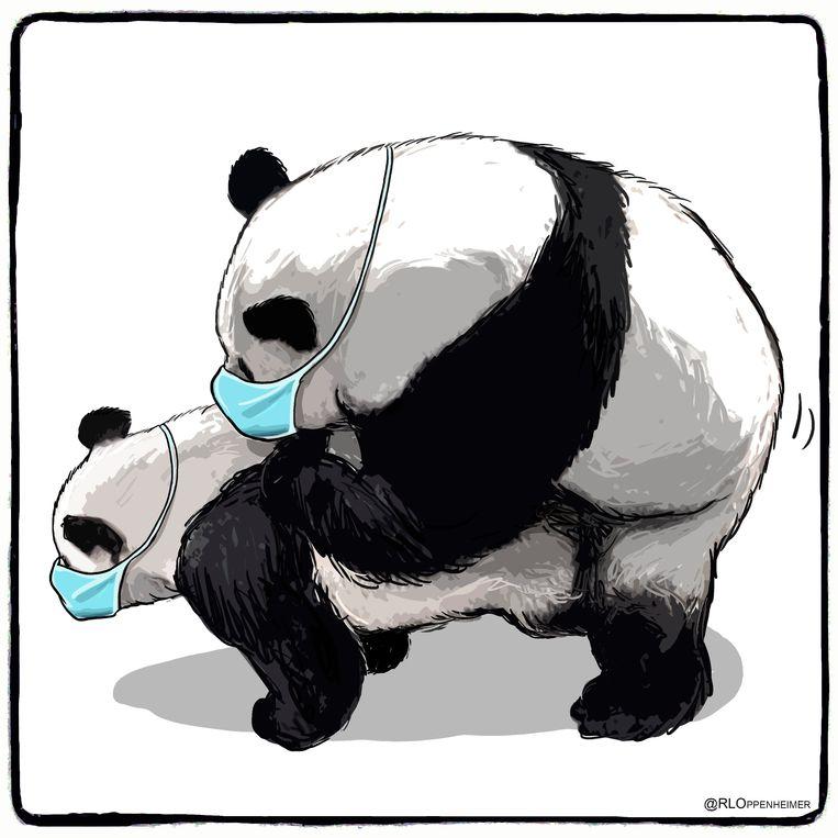 Cartoon voor De Limburger,  25 januari 2020. Beeld Ruben Oppenheimer