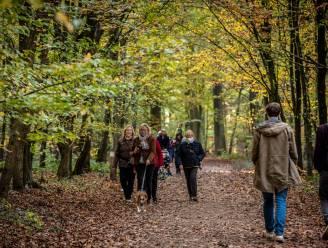 Op wandel in het Pajottenland en de Zennevallei: zeven mooie wandelingen in de buurt