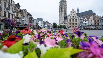 Van brouwerij Het Anker over de Vleeshalle tot de Wintertuin: op dagtrip naar Mechelen