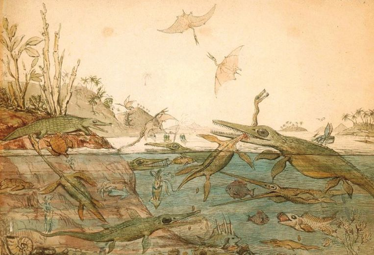 Op basis van Mary Annings fossielen schilderde Henry de la Beche deze voorstelling van de oertijd. Beeld