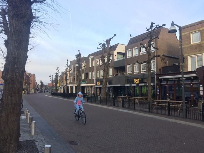 Rondom de Markt in Uden staan tientallen oude lindebomen.  De horeca wil ze weg hebben, de politiek heeft er wel oren naar.