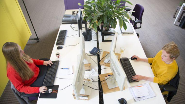 Werknemers van internetbureau Swink. Bij dit internetbedrijf hebben 11 van de 16 werknemers autisme. Beeld null