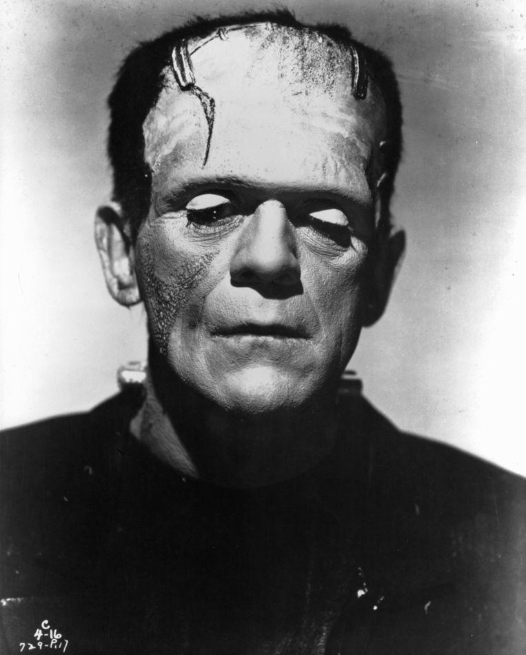 Het monster van Frankenstein is een wat knullige metafoor.  Beeld Getty Images