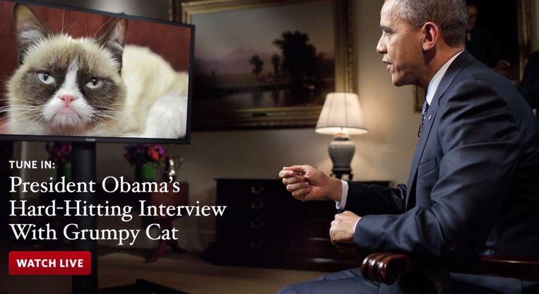 Obama interviewt de Grumpy Cat. Beeld YouTube