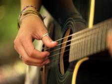 Kroegentocht met livemuziek langs vijf cafés in Twenterand