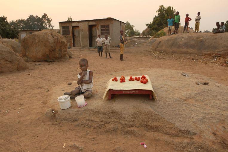 Een jongetje verkoopt tomaten langs de kant van de weg in Harare, Zimbabwe. De president van het land, Emmerson Mnangagwa, presenteerde gisteren zijn plannen om Zimbabwe te verlossen van tekorten en andere economische ellende. Beeld AP