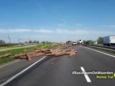 Snelweg A15 weer open, op rijbaan gevallen boomstammen opgeruimd