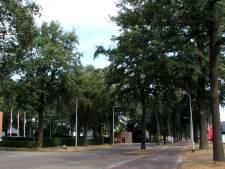 112 Bomen neer voor snelfietsroute Tilburg-Waalwijk