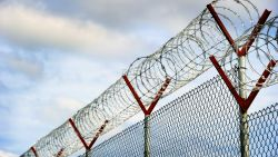Aantal geesteszieke geïnterneerden in de gevangenis gehalveerd