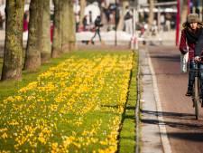 Zonnige zondag: 'In de zon en uit de wind is het heerlijk'