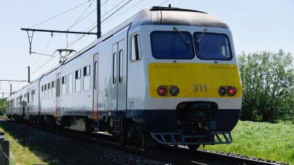 Treinverkeer tussen Dendermonde en Lokeren hersteld na aanrijding