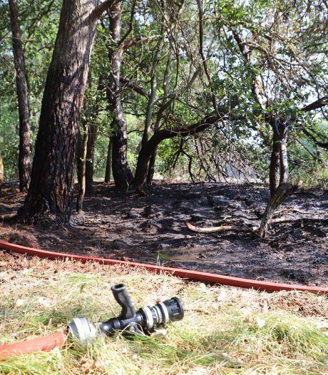Stuk natuur verwoest door brand in Schijndel
