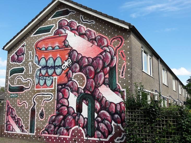 Hartje Breda: 'Muurschilderingen brengen de buurt juist bij elkaar'