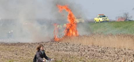 Negen natuurbrandjes op één dag: geen reden voor alarm