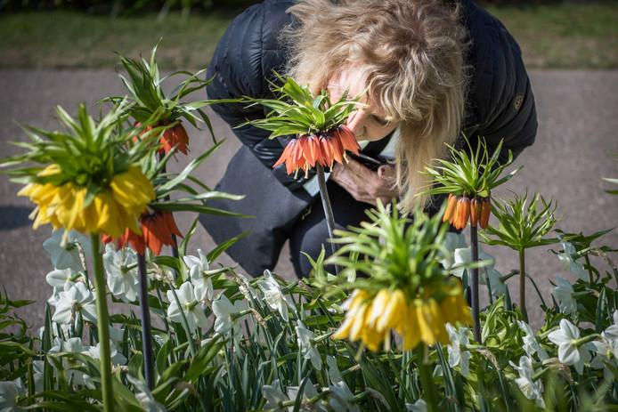 Een bezoekster ruikt aan de bloemen.