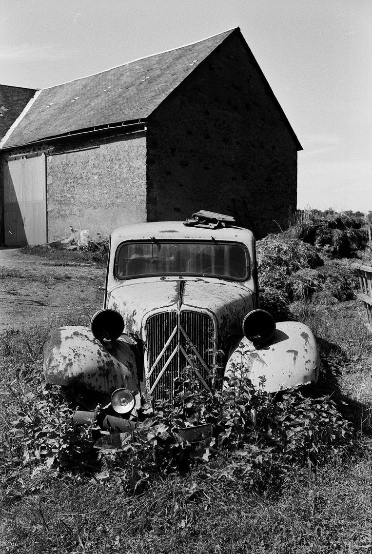 Frankrijk, Morvan (1978) Beeld null