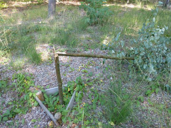 Vandalen vernielden de vorige vredesboom.