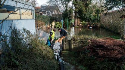 """Koppel ziet tuin overstromen na regenweer: """"Bij elke bui houden we ons hart vast"""""""