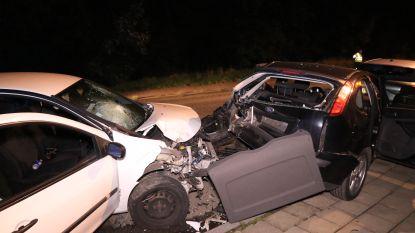Uitwijkmanoeuvre voor overstekende kat: bestuurder gewond en twee auto's vernield (maar poes blijft ongedeerd)