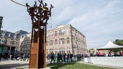 Leerlingen campus 'de helix' bouwen indrukwekkend vredeskunstwerk