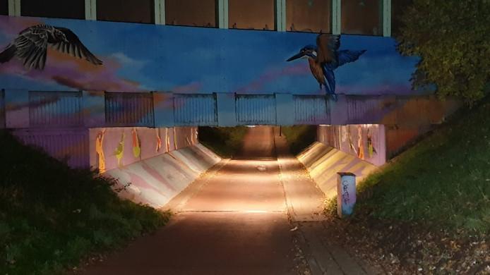 De betreffende fietstunnel in Enschede