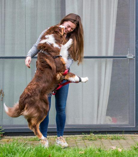 Coronacrisis haalt beste in Nederlanders naar boven