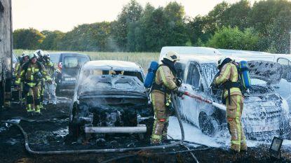 Vier auto's verloren na brand in filiaal Delrue Rent Services