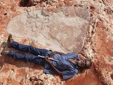 Grootste dino-pootafdruk ontdekt in Australië
