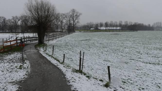 Dun sneeuwtapijt bedekt Deinze