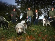 Honden in Oosterheide gaan straks helemaal los op twee speelvelden