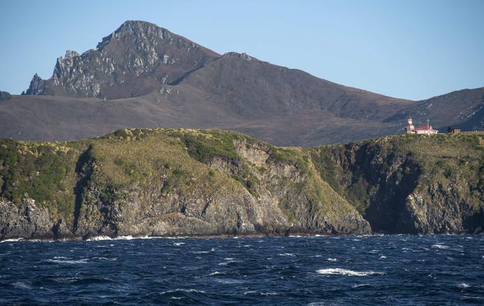 """De Zuidpool wordt steeds groener, stelt onderzoeker  Mattheuw Amesbury. """"Eerder zagen we deze reactie op slechts één locatie in het zuidelijke deel van het Antarctisch Schiereiland, maar nu weten we dat mosbanken op het hele eiland reageren op de recente klimaatverandering."""""""