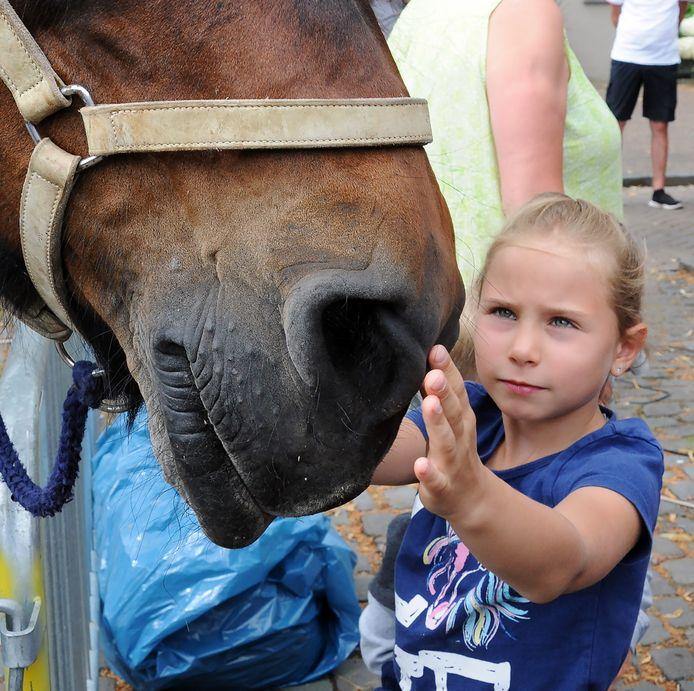 Stella (7 jaar) uit het Duitse Aachen aait een Belgische knol.