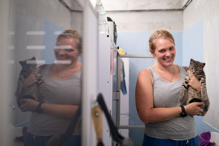 Katia Geudens van Dierenbescherming Mechelen met het zoveelste katje dat werd binnengebracht.
