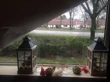 Hitsige eenden dwars door woonkamerraam Hengelo