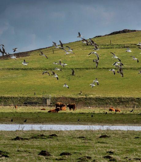 Afvalberg wordt zonnepark: 30.000 panelen op Spinder in Tilburg