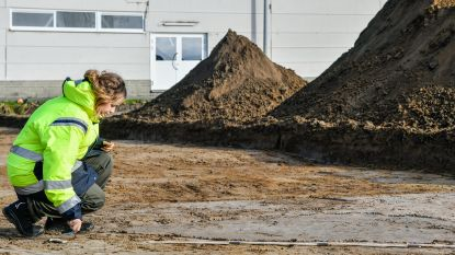 Romeinse en middeleeuwse sporen aan Molenberg? Archeologen starten zoektocht op site waar nieuwe sporthal en verkaveling komen