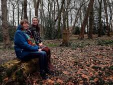 Actie Behoud Patersbosje geslaagd: Bomenkap  voorlopig van de baan