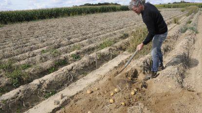 """Aardappelboer Guy Fets: """"Steeds meer mensen kiezen voor de korte keten en dat doet me veel plezier"""""""