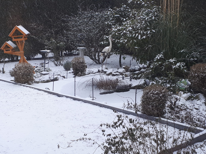 Winter in de tuin Toon Willems in Mill