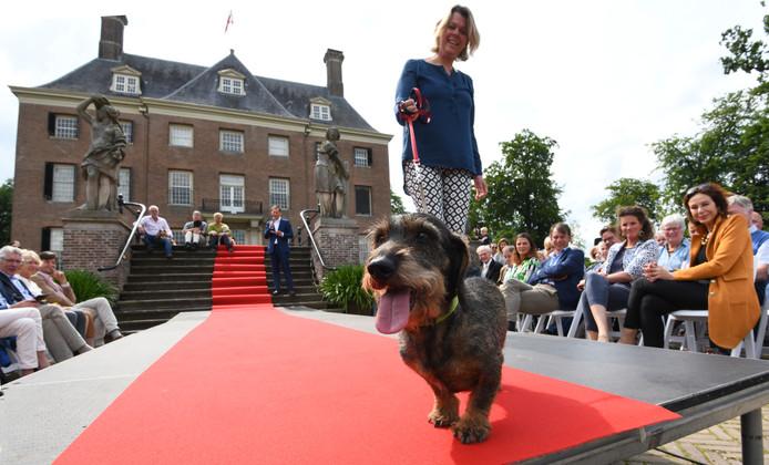 Amerongen Hondenshow als opening expositie KasteelAmerongen.