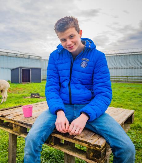 Tom (17) heeft twee alpaca's voor zijn huis: Doutzen en Dobi