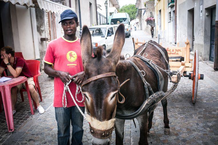 Een migrant haalt het vuilnis op met een ezel. Beeld Nicola Zolin