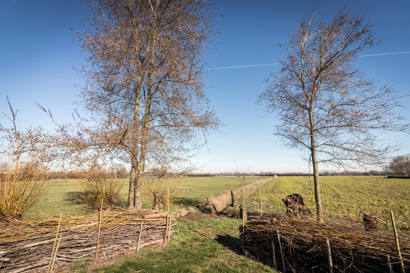 Hier komt de toekomstige wijk Aarlesche Erven in Best.
