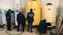 Criminelen verdienen miljoenen per jaar met nagemaakte dure olijfolie