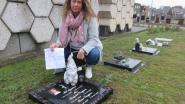 Verboden het graf van je moeder te beschermen tegen onkruid