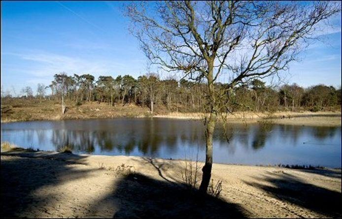 Zwemplas Surae in Dorst is teruggegeven aan de natuur.