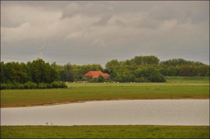 Brabantse Wal. foto Jan van Zuilen