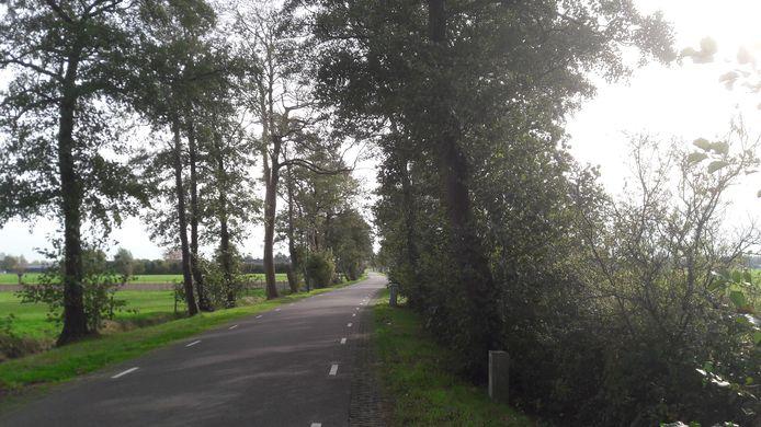 De Peter van den Breemerweg ligt in de open polder van Soest. Sluipverkeer naar Amersfoort rijdt hier vaak hard.