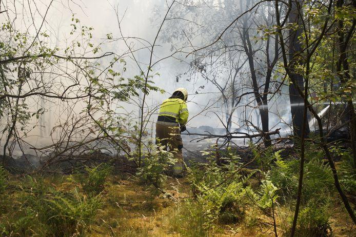 Bij de Klinkert in Drunen woedde donderdagmiddag een bosbrand.