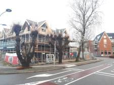 Monumentale lindebomen aan Julianalaan in Ermelo moeten weg